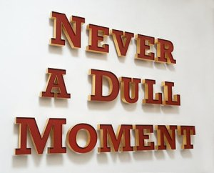 Never-a-dull-moment